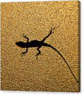 Bathroom Window Lizard Canvas Print