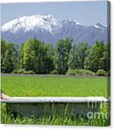 Bathtub On A Green Field Canvas Print