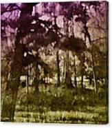 Bayou Twilight Canvas Print