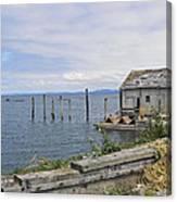 Bayside Boat Barn Canvas Print