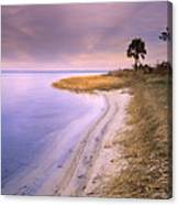 Beach Along Saint Josephs Bay Florida Canvas Print