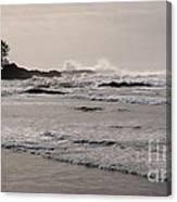 Beach At Tofino  Canvas Print
