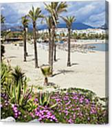 Beach In Puerto Banus Canvas Print