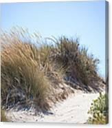 Beach Sand Dunes I Canvas Print