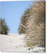 Beach Sand Dunes II Canvas Print