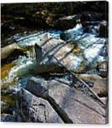 Bear River 2 Canvas Print