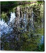Bear River Reflection Canvas Print
