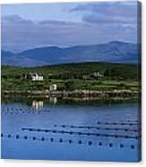 Beara, Co Cork, Ireland Mussel Farm Canvas Print