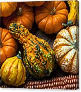 Beautiful Autumn Canvas Print
