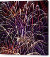 Beautiful Fireworks Canvas Print