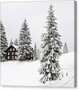 Beautiful Winter Landscape With Trees And House Canvas Print