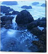 Beauty In The Ebb And Flow Canvas Print