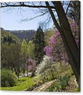 Beauty Of Spring Canvas Print