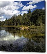 Beaver Lodge Canvas Print