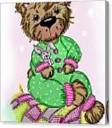 Becky Bear Canvas Print