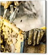 Bee Keeper Canvas Print