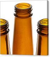 Beer Bottles 1 B Canvas Print