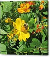 Bees Again Canvas Print