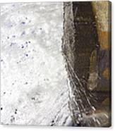 Behind Bridal Veil Falls In Dupont State Park Nc Canvas Print