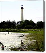 Behind The Cape May Lighthouse Canvas Print