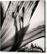 Behind The Petals Black And White Canvas Print