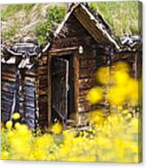 Behind Yellow Flowers Canvas Print