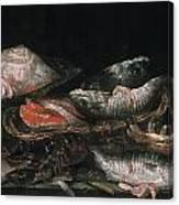 Beijeren: Fish Canvas Print
