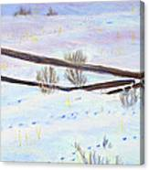 Being The Fence Canvas Print