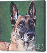 Belgian Malinois Canvas Print