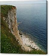 Bempton Cliffs 4 Canvas Print