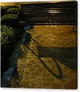 Bench And Shadow Canvas Print