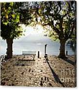Bench And Trees On The Lake Front Canvas Print