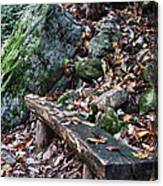 Bench Beside The Trail To Cascade Falls Canvas Print