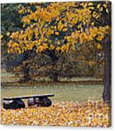 Bench In The Autumn Landscape Canvas Print