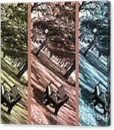 Bench In The Park Triptych  Canvas Print