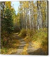 Bend In The Trail Canvas Print