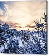 Bergen Winter Canvas Print