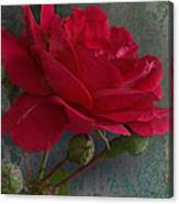Betty's Red Rose II With Decorations Canvas Print