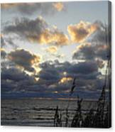 Beyond The Seagrass Canvas Print