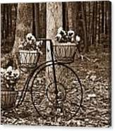 Bicycle Built For Three Canvas Print