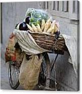 Bicycle Loaded With Food, Delhi, India Canvas Print