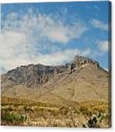 Big Bend Splendor Canvas Print