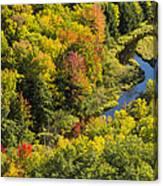 Big Carp River 3 Canvas Print
