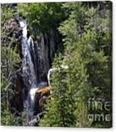 Big Horn National Forest Canvas Print