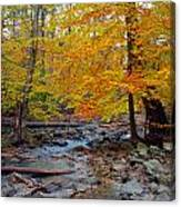 Big Hunting Creek Down Stream From Cunningham Falls Canvas Print
