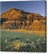 Big Muddy Badlands, Saskatchewan, Canada Canvas Print