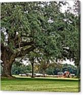 Big Oak And The Tractors Canvas Print