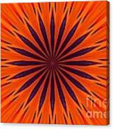 Big Orange Canvas Print