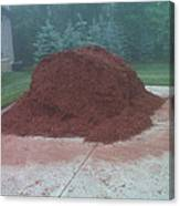 Big Pile Of Mulch Time Canvas Print