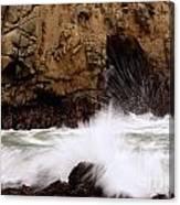 Big Sur 1 Canvas Print